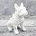 """Spardose Hund """"Bulli"""" französische Bulldogge Höhe 16cm aus Keramik weiß"""